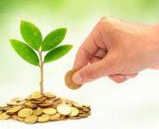 Cách khai thuế tài nguyên theo quy định pháp luật