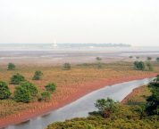 Đất bãi bồi ven sông, ven biển theo quy định của luật