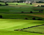 Tiền sử dụng đất phải nộpkhi được Nhà nước giao đất được xác định ra sao?