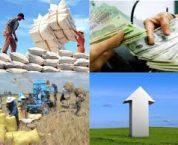 Chi đầu tư phát triển của ngân sách nhà nước là gì?