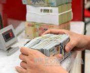 Nội dung hoạt động thanh tra ngành ngân hàng là gì?