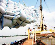 Kinh doanh xuất khẩu gạo cần đáp ứng những điều kiện nào?