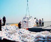 Trình tự cấp Giấy phép nhập khẩu phân bón theo quy định hiện hành