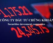 Công ty đầu tư chứng khoán theo quy định pháp luật