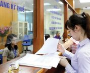 Trình tự lập, xử lý hồ sơ xóa nợ tại Cục Thuế hoặc Cục Hải quan, Cục Kiểm tra sau thông quan