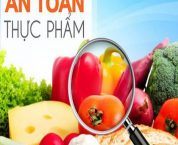 Giấy xác nhận kiến thức về an toàn thực phẩm cho tổ chức và cá nhân