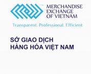 Phê chuẩn Điều lệ hoạt động sửa đổi, bổ sung của Sở Giao dịch hàng hóa