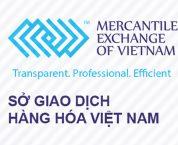 Cấp sửa đổi, bổ sung Giấy phép thành lập Sở Giao dịch hàng hóa