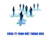 Công ty TNHH một thành viên là gì? Những quy định pháp luật liên quan